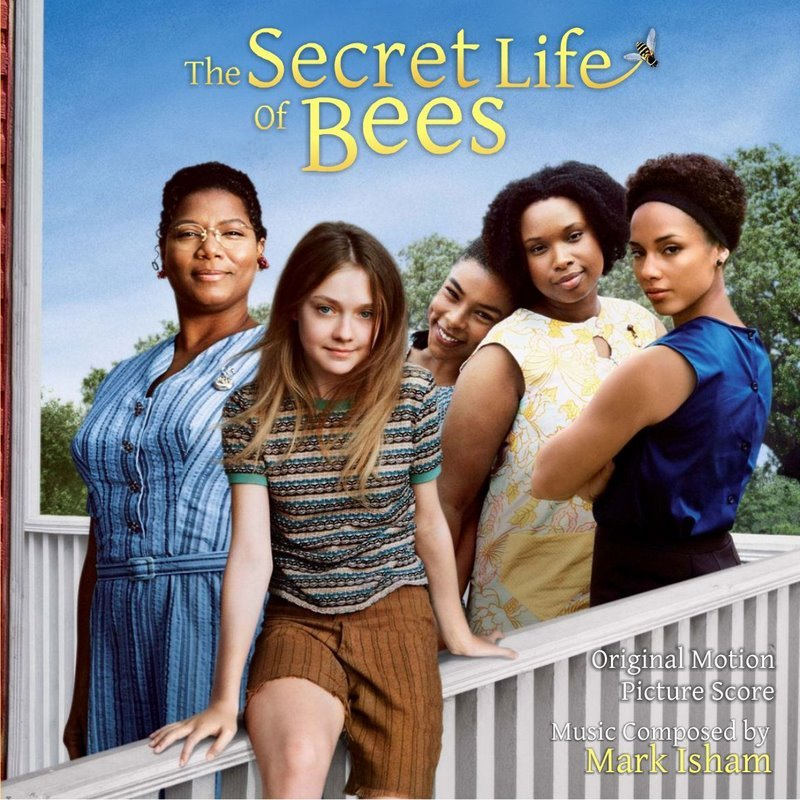 """the boatwright sisters in the secret Where did lily and rosaleen stay while with the boatwright sisters 29 describe the stone wall chapter 5 30 what was the mystery of """"oh susanna"""" 31."""